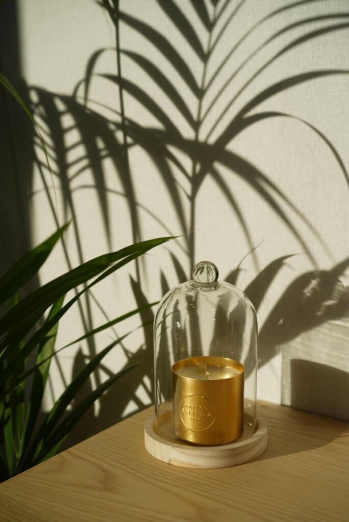 bougies-parfumee maisonshiiba-maison et objet