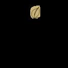 iconweb-fait main-maison-shiiba-2
