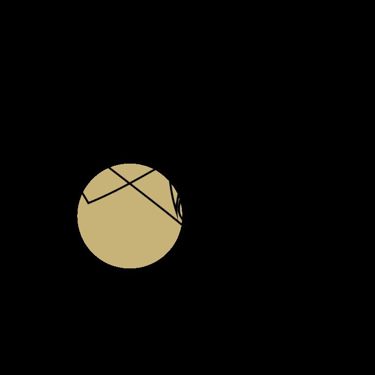 livraison icon